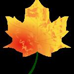 Autumn-Leaf4--Arvin61r58